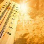 На западе Турции была зафиксирована рекордная жара