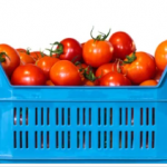 Увеличится квота на поставку турецких томатов в Россию