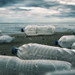 Турция запретила ввоз пластиковых отходов