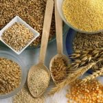 Экспорт круп и бобовых из Турции достиг $4,1 млрд