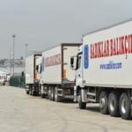 Экспорт турецких морепродуктов превысит 1,2 млрд долларов