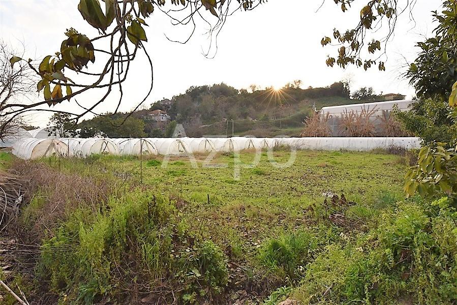 Представляем земельный участок в районе Кестель