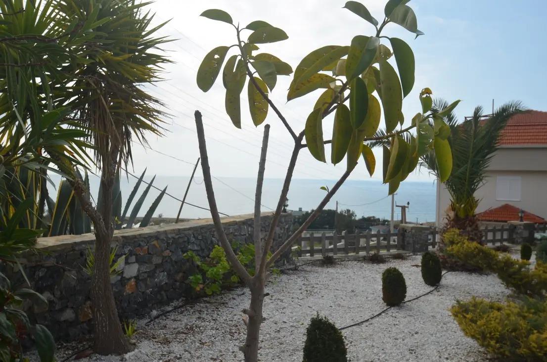 Меблированная вилла 2+1 в 350 метрах от пляжа - Фото 5