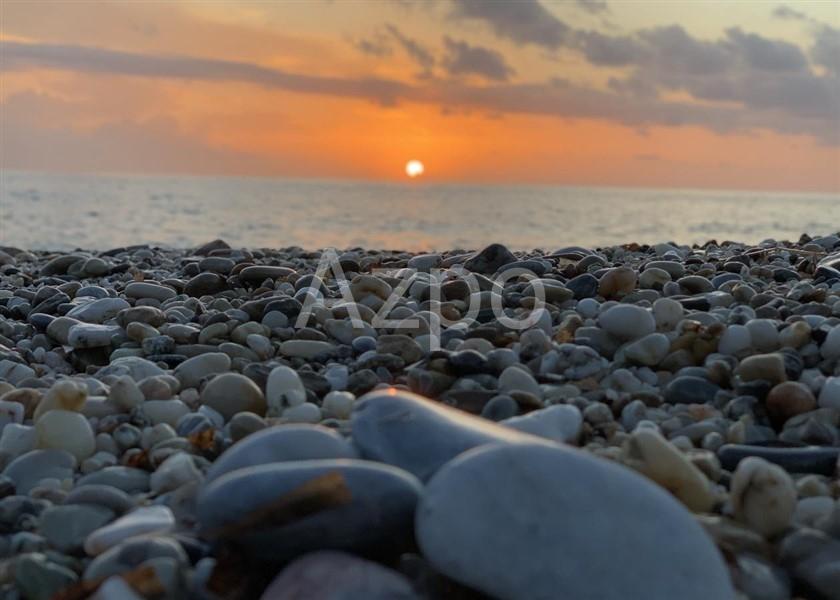 AZ54935 - Фото 4