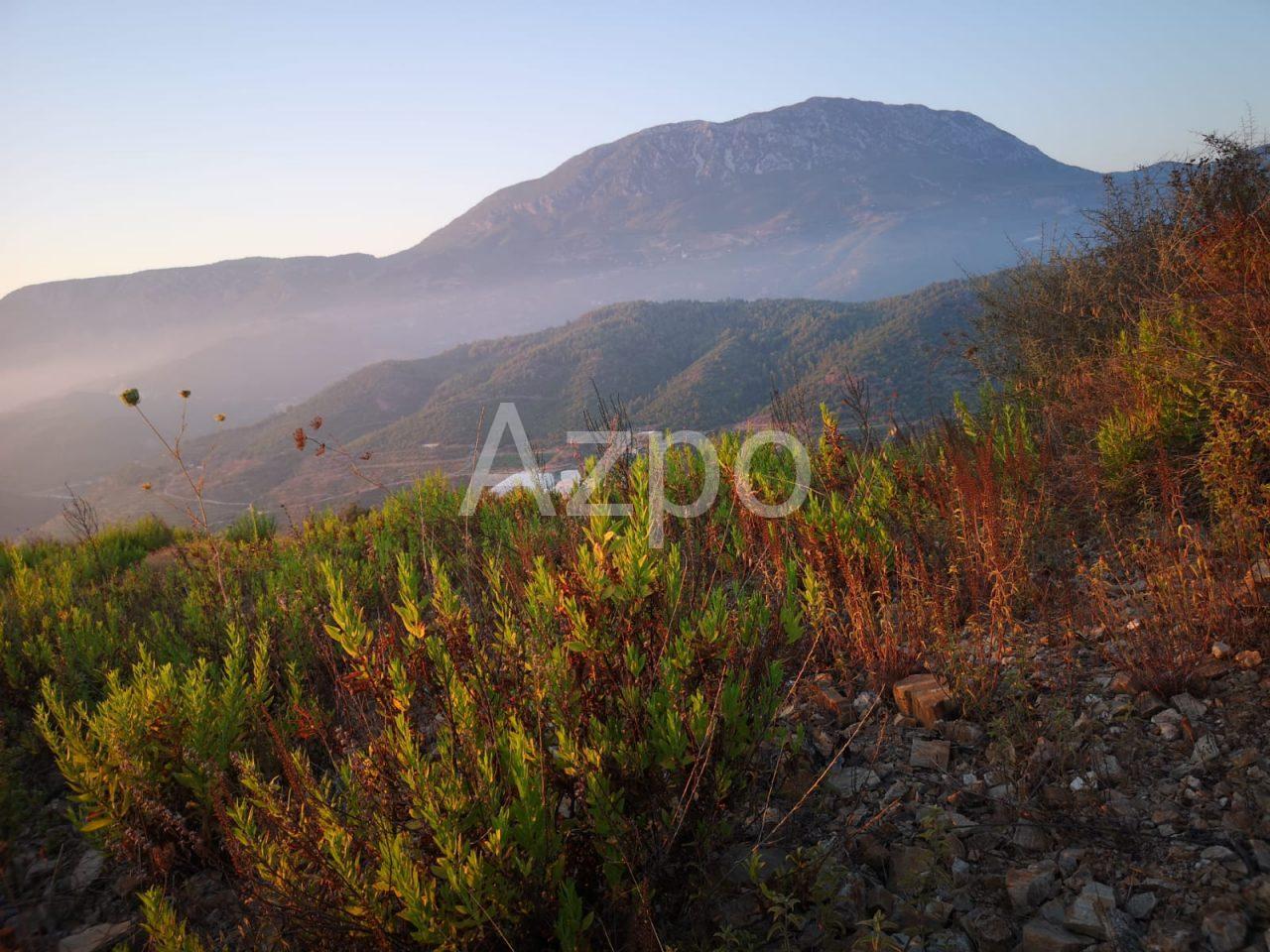 Выгодное предложение земельного участка в Каргыджаке